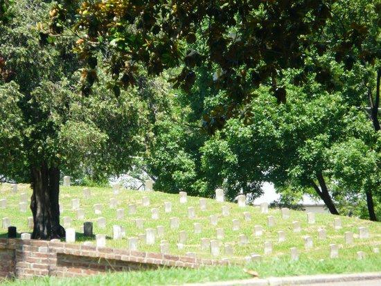 Vicksburg National Cemetery: Cemetery