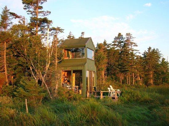 Castalia Marsh Retreat : Bird House