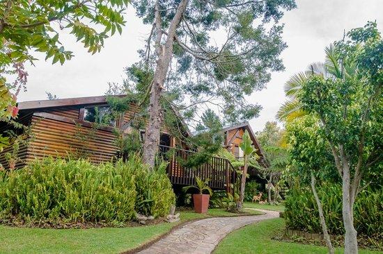 Knysna Tonquani Lodge & Spa: Leatherleaf & Fern Tree Chalet