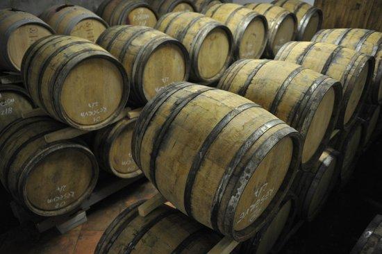 Wine cellar Brkic