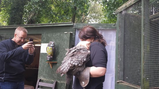 Dalhousie Castle Falconry : cuddles!!