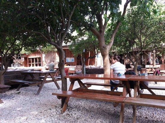 Bayrams Tree Houses: Main public area