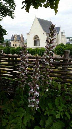 Château d'Angers : Jardins