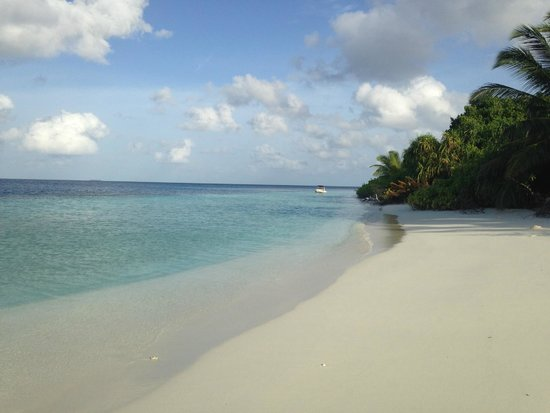 Jumeirah Dhevanafushi: PLAYA DE LA BEACH VILLA