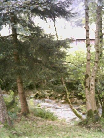 Au Pied des Chaumes : Le ruisseau au bas du jardin