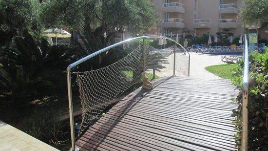 Tropic Garden Aparthotel: The frog chorus bridge