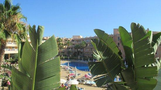 Tropic Garden Aparthotel: Hotel balcony room