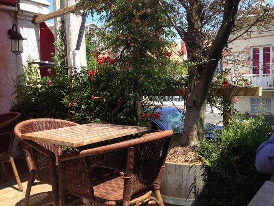 Au pique assiette : Vue terrasse ombragée