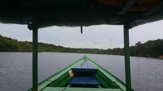 Amazon Ecopark Jungle Lodge: View from the boat shuttle