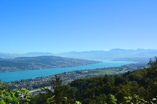 Uetliberg Mountain : View to Lake Zurich and the Alps, from Uetliberg