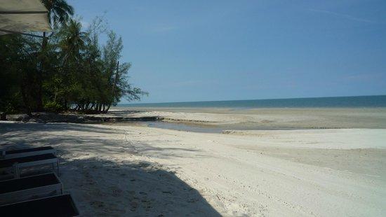 Mango Beach Resort: Beach
