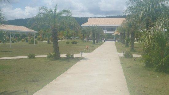 Mango Beach Resort: Grounds