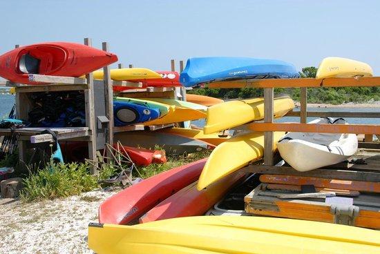 Great Salt Pond: Pond and Beyond Kayak