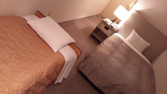 Hotel Vista Kamata Tokyo: スタジオツイン