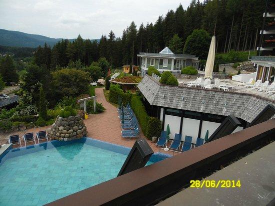 Vier Jahreszeiten am Schluchsee : Pool