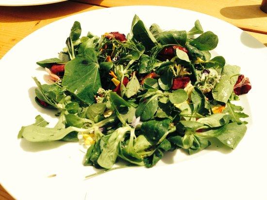 Gostner Schwaige: We asked for a salad. Wonderful!