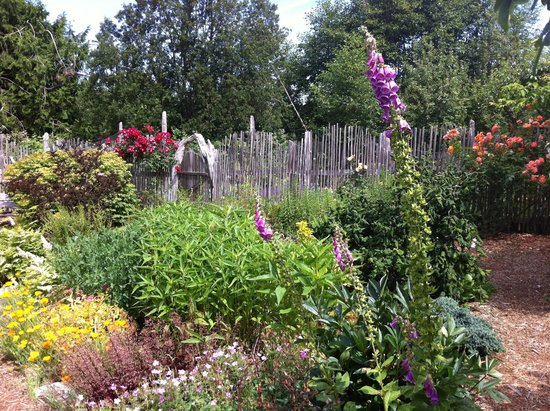 Cardboard House Bakery: Perennial Garden beside the Bakery