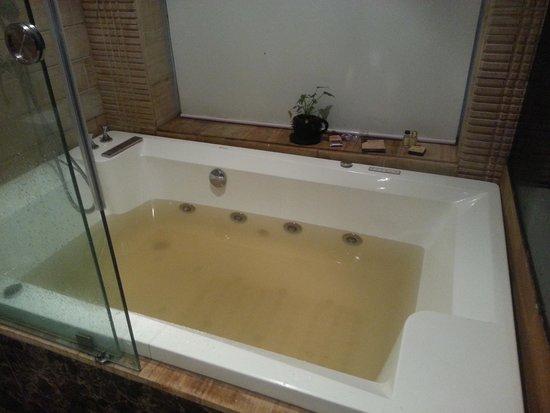 Della Adventure Resorts: Dirty water in bathrooms.