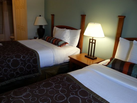 Staybridge Suites Chattanooga Downtown : the beds were VERY comfy ....