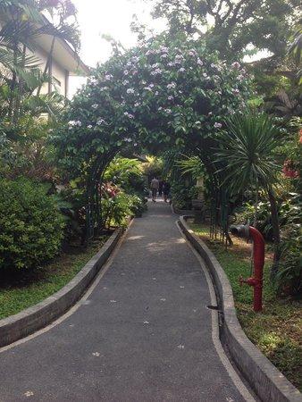 Risata Bali Resort & Spa: General hotel grounds