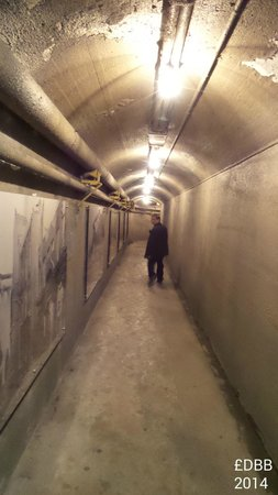 Casa Loma : the tunnel to stables and garage which is accross the street