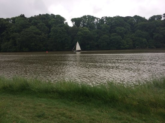 Sharpham Wine and Cheese: Dart from quay at estate