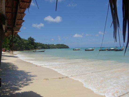 Snorkling - Picture of Bamboo Island, Ko Phi Phi Don - TripAdvisor
