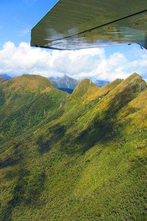 Fly Fiordland: Flying over Fiordland
