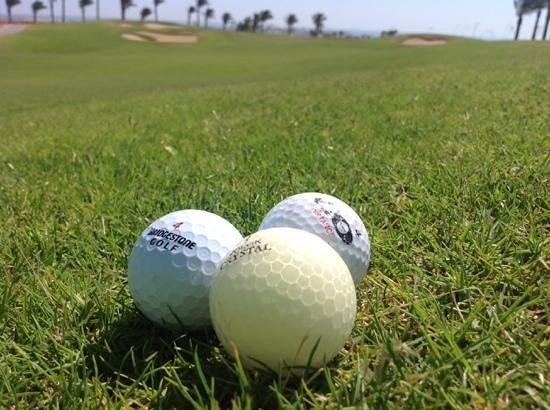 Steigenberger Makadi Hotel: autour du golf on se promene et on fait des decouvertes