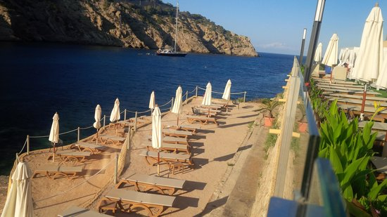 Palladium Hotel Cala Llonga: Terraced sun-beds