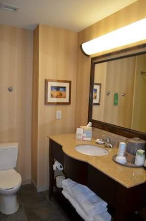 Hampton Inn & Suites San Antonio Airport: The bathroom