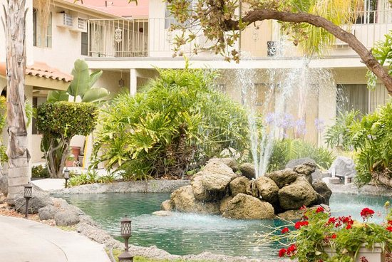 California Suites Hotel: even the Humming birds love it
