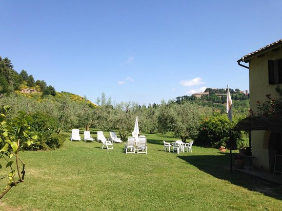 Agriturismo Nobile: Some of the grounds
