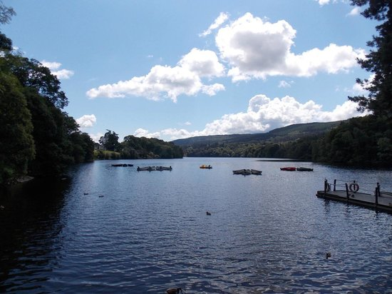 Pitlochry Boating Station Cafe: Loch Faskally view from the Boating Station  : 01 July 2014