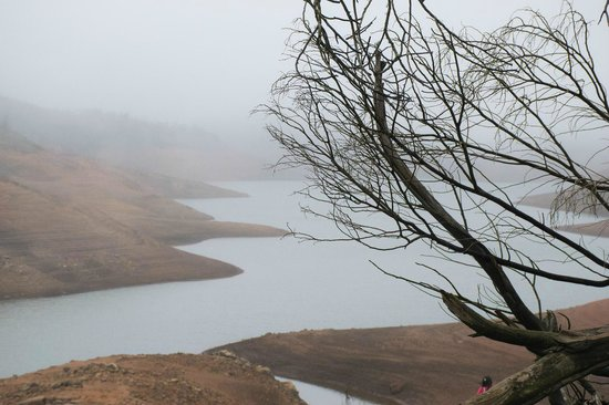 Upper Bhavani Lake: Foggy UB lake