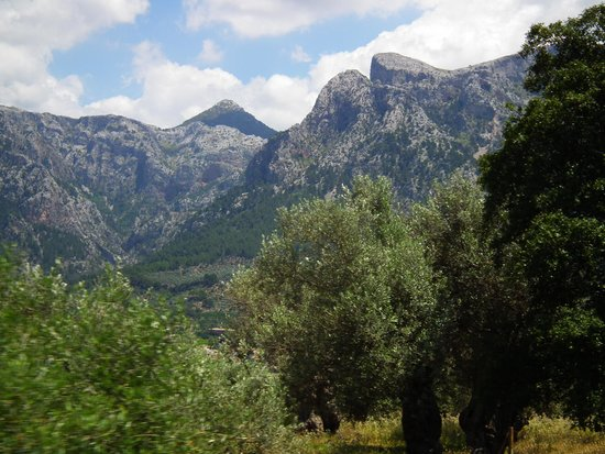 Ferrocarril de Soller : View from the train