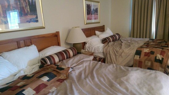 CrestHill Suites Syracuse: Beds.. comfy. Nice pillows.