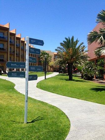 Barceló Fuerteventura Thalasso Spa: Interno