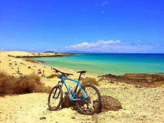 Life Cycles Fuerteventura: Sand Dunes Drop Beach