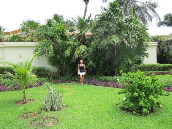 Grand Bahia Principe Tulum : Sur le site de l'hôtel.