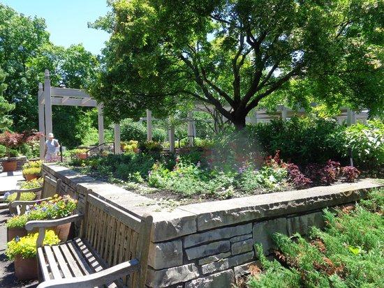 Minnesota Landscape Arboretum: Shade
