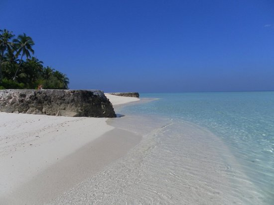 Alimatha Island : Fantastico!