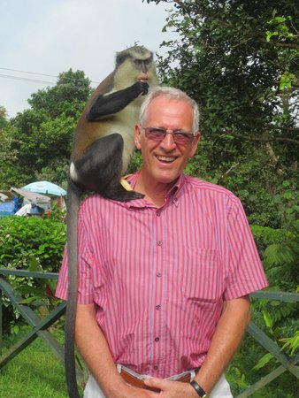 Sunsation Tours: Big surprise, a monkey on my shoulder!