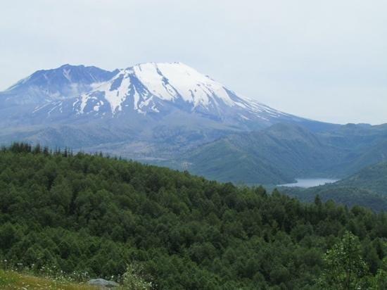 Johnston Ridge Observatory: Mt. St. Helens from Hoffstadt Bluffs Visitor Center.