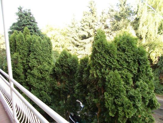 Villa Edvin: Вид с моего балкона.