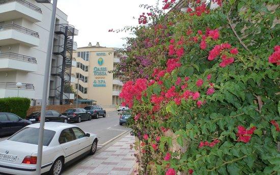 Hotel GHT Oasis Tossa & SPA : Vue extérieure hôtel 1