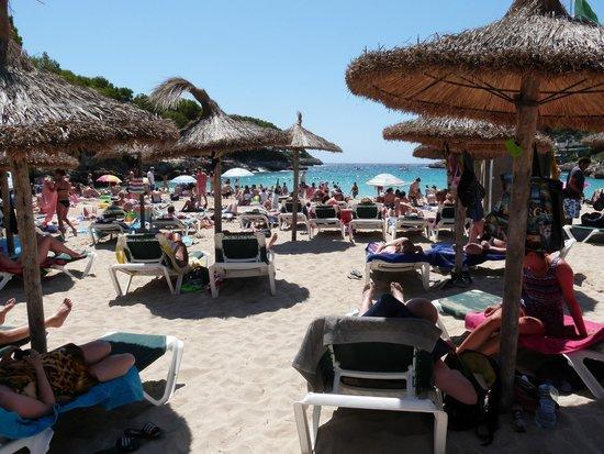 Gavimar Cala Gran Costa del Sur Hotel & Resort: beach