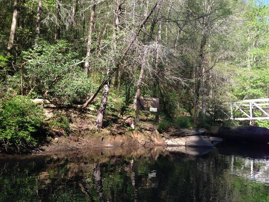 Jocassee Lake Tours: Foothills trail - great hike!