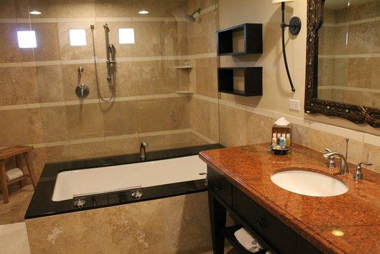 Omni Scottsdale Resort & Spa at Montelucia: large bathroom/water pressure poor in shower