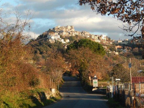 Castello Orsini Hotel: vista del castello dalla valle
